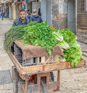 More produce headed to market in Nablus