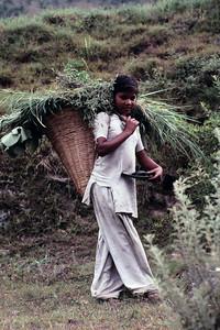 N India,  Kulu Valley  31