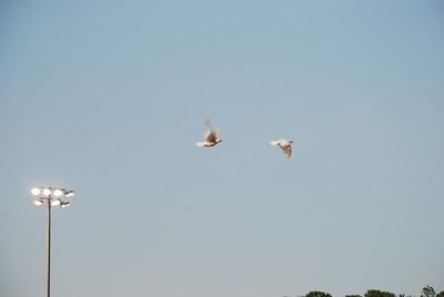 2011-07-29-OBX-042