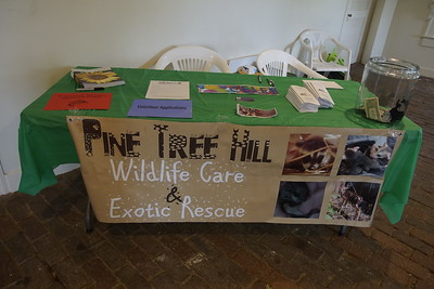 Pine_Tree_Hill_Wildlife_Rescue (9)