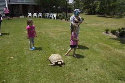 Pine_Tree_Hill_Wildlife_Rescue (23)
