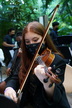 Miami Music Project Concert at Pinecrest Gardens