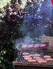 The all important grill. The smell called you in from blocks away.