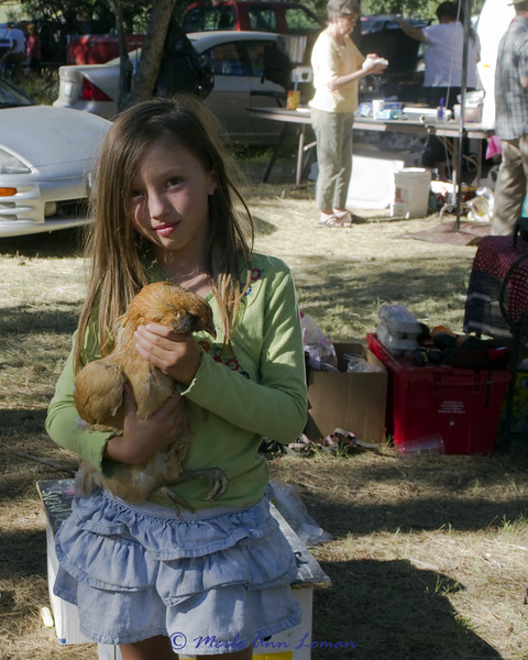 No, this chicken isn't for dinner. The Ameraucana chicken is her pet.