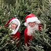 Santa and Ms Claus