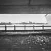 """Pro apleistą Trakų """"Žalgirio"""" irklavimo sporto bazės langą... / Through the abandoned window of Trakai """"Žalgiris"""" rowing sports base ..."""
