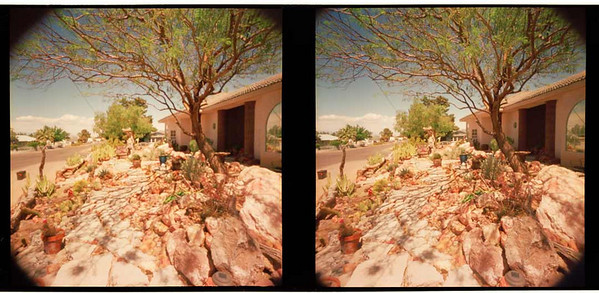 Front Walk 3D  - Note that the mailbox near the closer to the image frame in the left image.  Proper viewed, these two images have a three dimensional appearance.