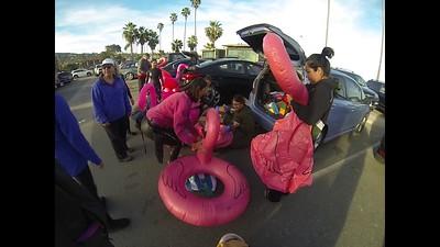 Pink Flamingo Swim Party