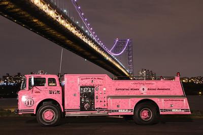 Daria Pink Heals  GWB Cancer Awareness Month  Oct.2013