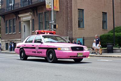 Ridgefield Pink Heals Car