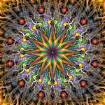 Reverse Cosmosis
