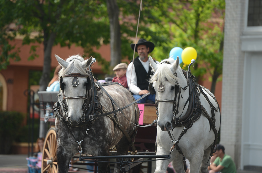 . Pioneer Day Parade, May 5, 2018,  in Chico, California. (Carin Dorghalli -- Enterprise-Record)