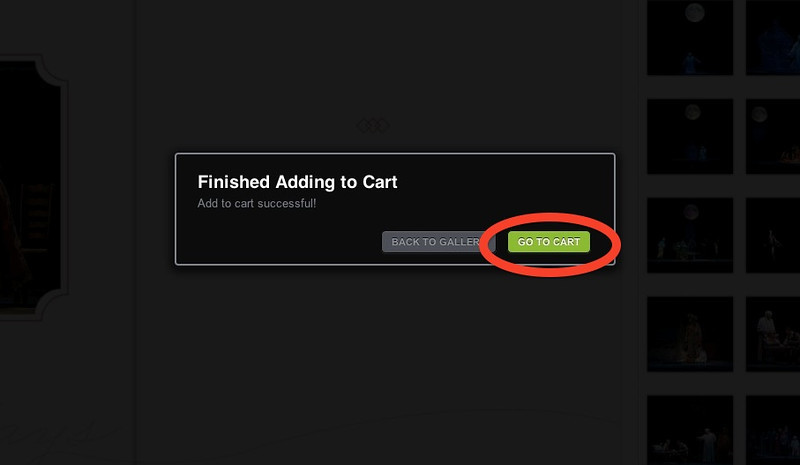 • Once the cards have been added, you can either view your cart or go back to browsing photos.