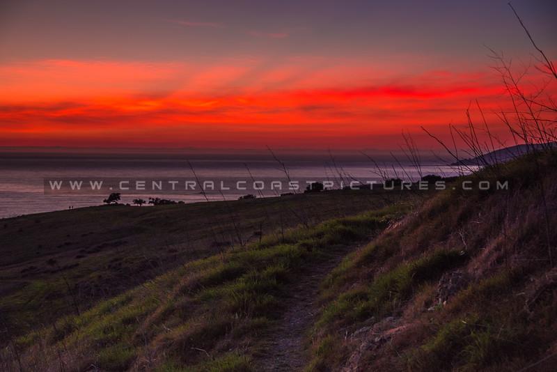 pismo preserve night sunset-2306
