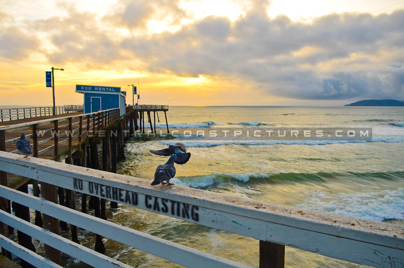 pismo-beach-pier-2882