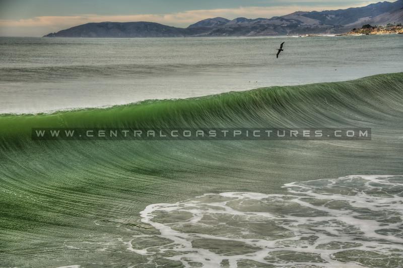 pismo tides waves 9458