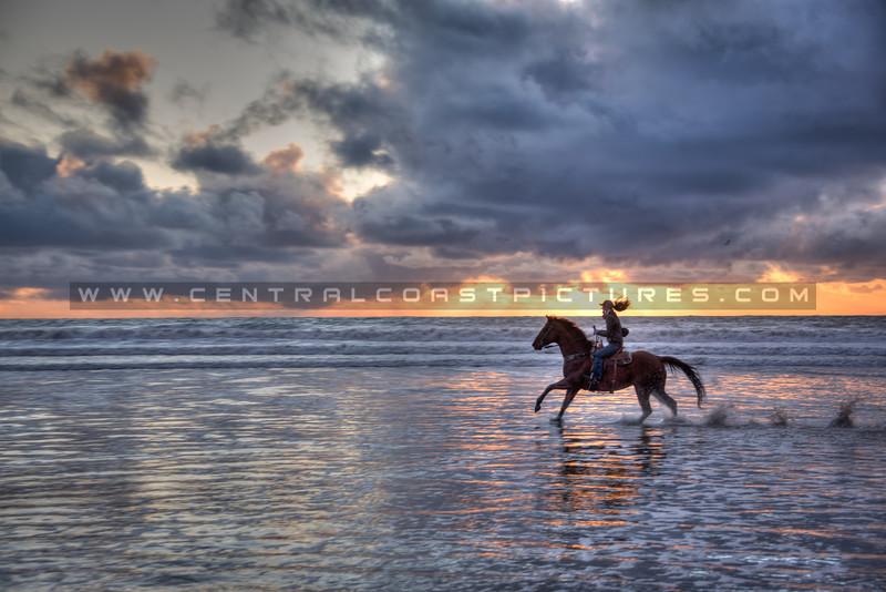 pismo horses storm 1867-