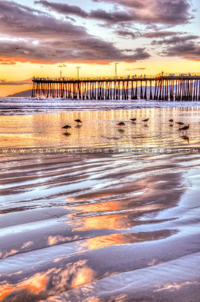 pismo beach reflections-1330