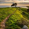 lone tree pismo preserve 2065-