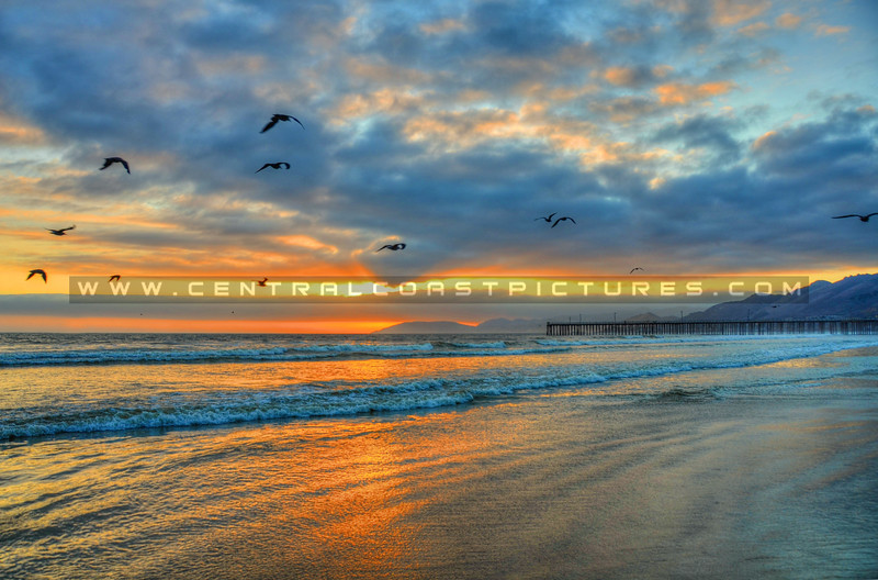 pismo sunray reflections-0785