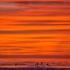 surfers sunset 7437