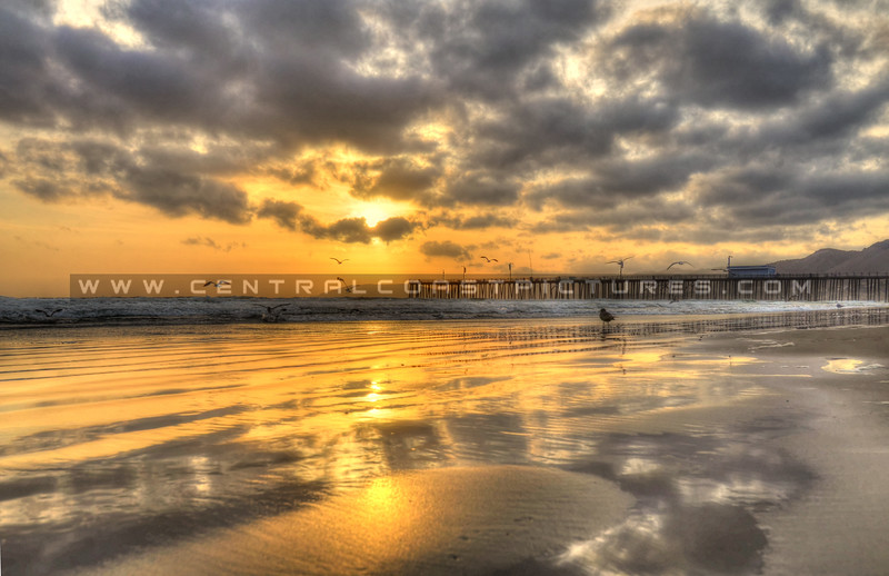 pismo-reflections_7596