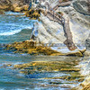 pismo beach stairs-6915