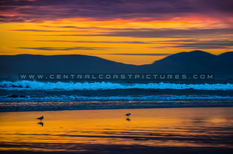 pismo beach sunset-0824