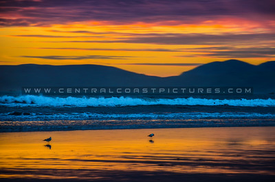 pismo beach sunset-0824