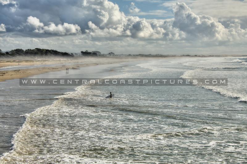 pismo surfer 7821