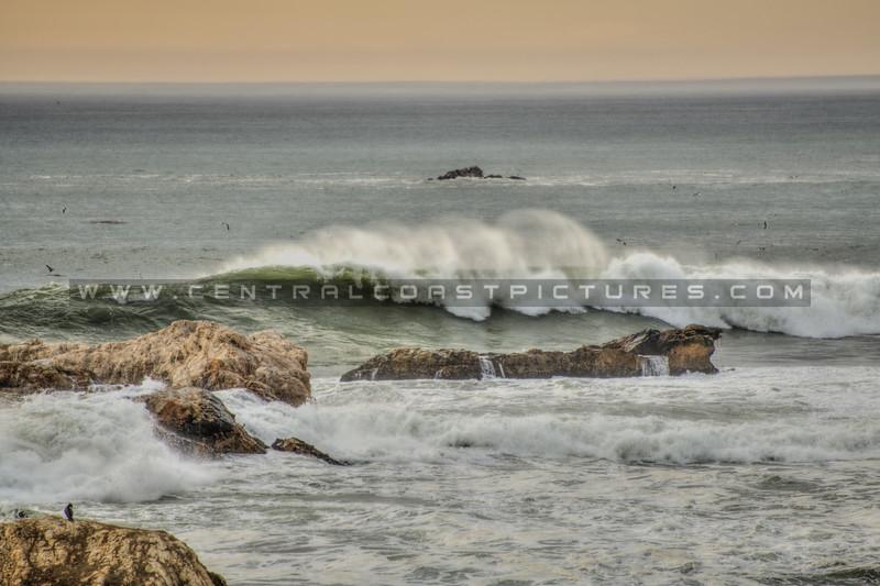 shell beach tides waves 9511