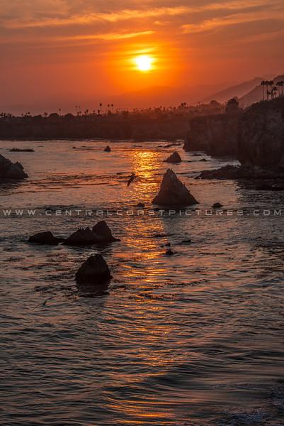shell beach sunset-4622
