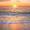 shell beach 1532-