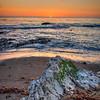shell beach sunset 1555-