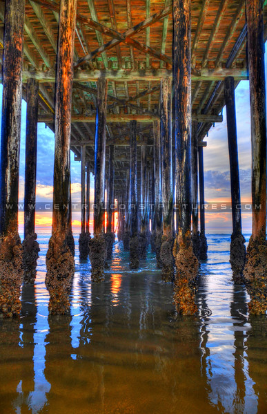 under the old pismo pier_8067