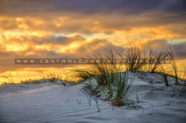 grover-dunes_6449-b