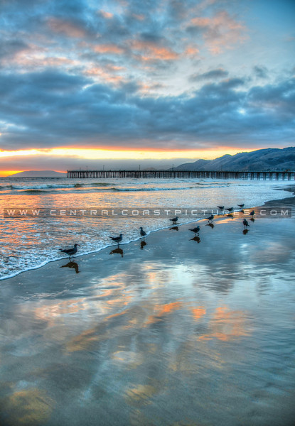 pismo sunray reflections-0812