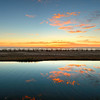 pismo-reflection_6677