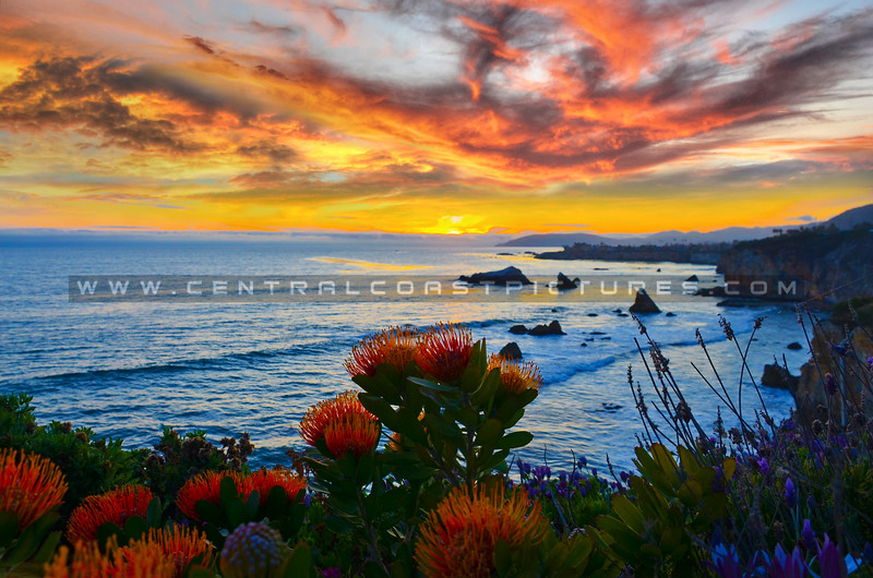 shell-beach-sunset-composite-3581-5914-2189