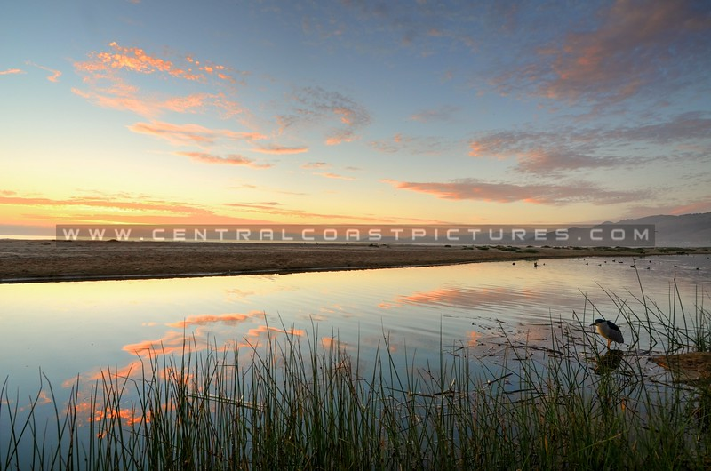 pismo-north-beach-reflections_6682