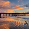 pismo reflection 1289-