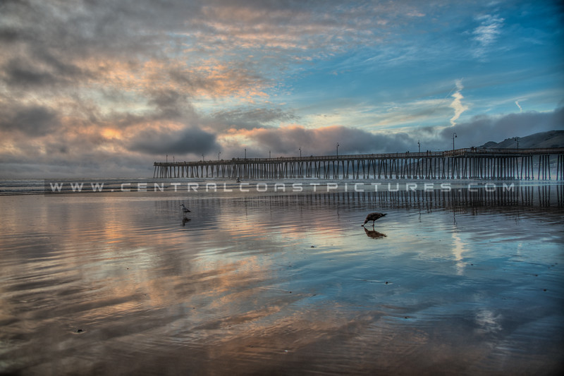 pismo pier reflections 5143