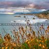 pismo shell beach cliffs 8577-8577