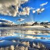 heron reflection sunray_2140