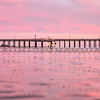 pismo pink town-4510-