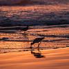 pismo pier sunset-8107
