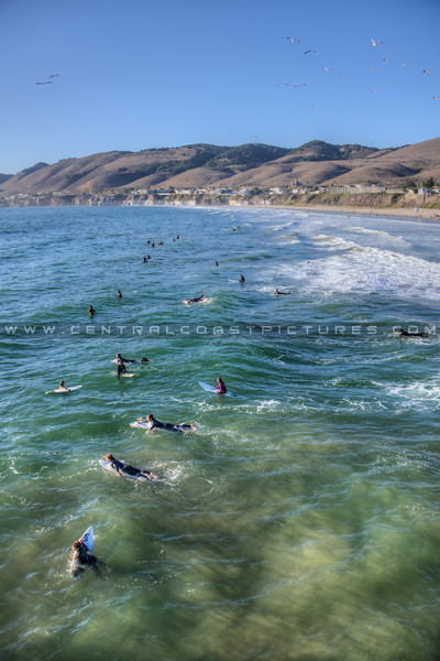 pismo surfers 5173