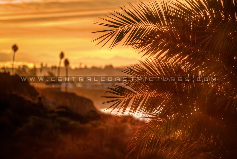 shelter cove sunrise 3630-