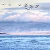 pismo beach 1473