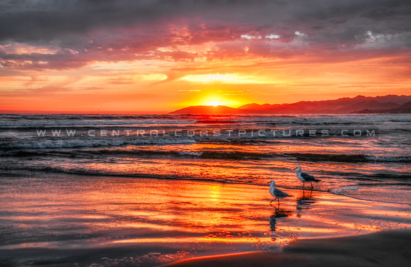 pismo sunset-8940